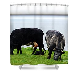 Mama Daddy And Baby Shower Curtain by Patricia Griffin Brett