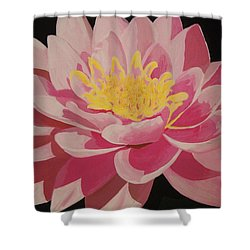Mama's Lovely Lotus Shower Curtain