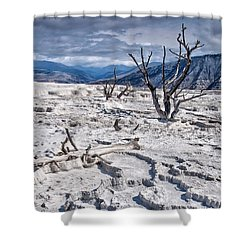 Mammoth Terraces Vertical Shower Curtain