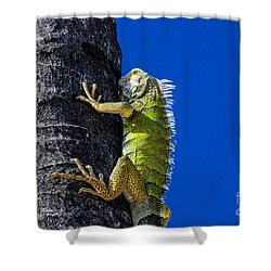Man Is This Beach Crowded Shower Curtain
