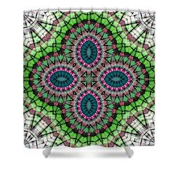 Mandala 111 Shower Curtain by Terry Reynoldson