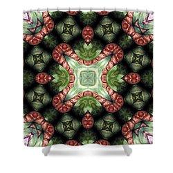 Mandala 113 Shower Curtain by Terry Reynoldson
