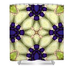 Mandala 115 Shower Curtain by Terry Reynoldson