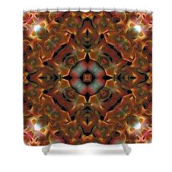 Mandala 119 Shower Curtain by Terry Reynoldson