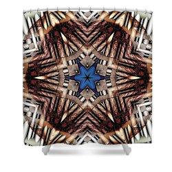 Shower Curtain featuring the digital art Mandala 13 by Terry Reynoldson