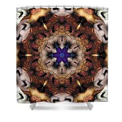 Shower Curtain featuring the digital art Mandala 16 by Terry Reynoldson