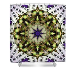 Shower Curtain featuring the digital art Mandala 21 by Terry Reynoldson