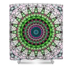 Mandala 26 Shower Curtain by Terry Reynoldson
