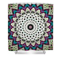 Mandala 36 Shower Curtain by Terry Reynoldson