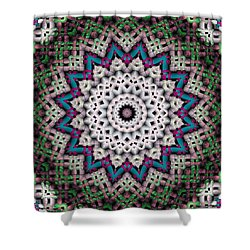 Mandala 37 Shower Curtain by Terry Reynoldson