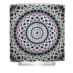 Mandala 40 Shower Curtain by Terry Reynoldson