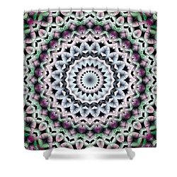 Shower Curtain featuring the digital art Mandala 40 by Terry Reynoldson