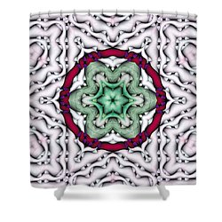 Shower Curtain featuring the photograph Mandala 7 by Terry Reynoldson