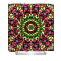 Shower Curtain featuring the digital art Mandala 70 by Terry Reynoldson