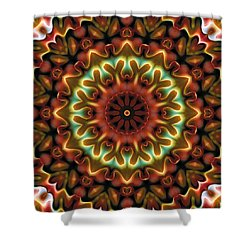 Shower Curtain featuring the digital art Mandala 71 by Terry Reynoldson