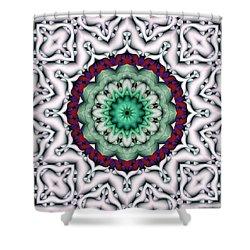 Mandala 8 Shower Curtain by Terry Reynoldson