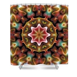 Mandala 92 Shower Curtain by Terry Reynoldson