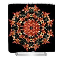 Shower Curtain featuring the photograph Mandala Daylily by Nancy Griswold