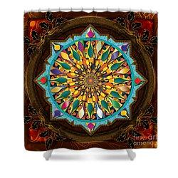 Mandala Droplets Shower Curtain by Bedros Awak