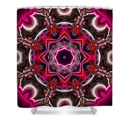 Mandala Of The Unseen Shower Curtain by Edward Anderson