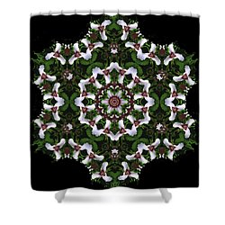 Mandala Trillium Holiday Shower Curtain