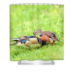 Mandarin Duck Couple Shower Curtain