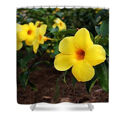Mandevilla Shower Curtain