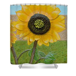 Mandy's Dazzling Diva Shower Curtain
