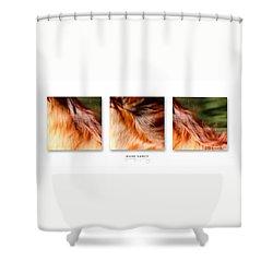 Mane Dance Triptych Shower Curtain by Michelle Twohig