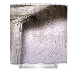 Hidden Gem Shower Curtain by Michelle Twohig