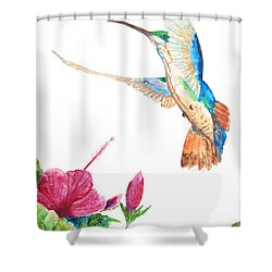Mango Hummingbird Shower Curtain
