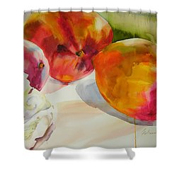 Mangoes  Shower Curtain