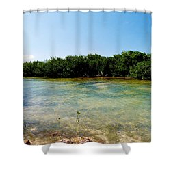 Shower Curtain featuring the photograph Mangrove @ Safehaven Sound by Amar Sheow