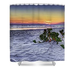 Mangrove On The Beach Shower Curtain by Marvin Spates