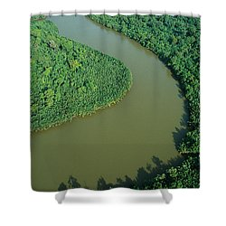 Mangrove Rhizophora Sp In Mahakam Delta Shower Curtain by Cyril Ruoso