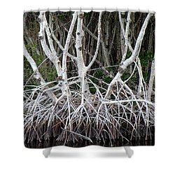 Mangrove Roots Shower Curtain