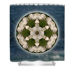Manifesting Abundance Shower Curtain