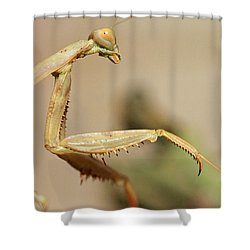 Mantis On The Hunt Shower Curtain by Shoal Hollingsworth
