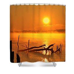 Mantis Sunrise Shower Curtain