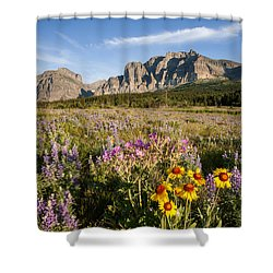 Shower Curtain featuring the photograph Many Glacier Spring by Jack Bell
