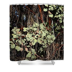 Manzanita Shower Curtain