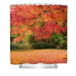 Maple In Red And Orange Shower Curtain