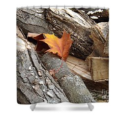 Shower Curtain featuring the photograph Maple Leaf In Wood Pile by Brenda Brown
