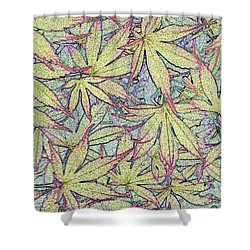 Maple Leaves No.1 Shower Curtain
