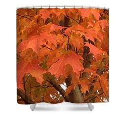 Maple Orange Shower Curtain