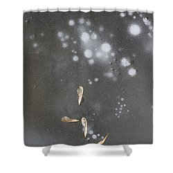 Maple Seeds On Ice Shower Curtain by Steven Ralser