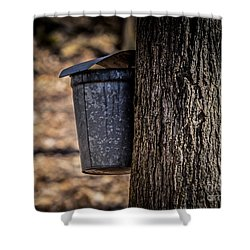 Maple Syrup Time Collecting Sap Shower Curtain