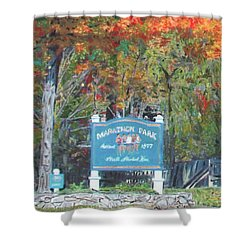 Marathon Park Shower Curtain