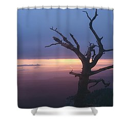 Marble View Snag Shower Curtain