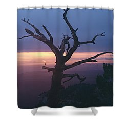 Marble View Snag-v Shower Curtain